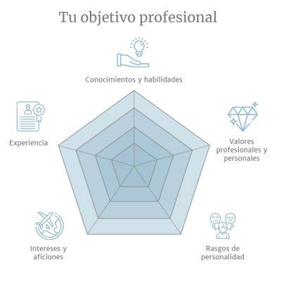tu objetivo profesional